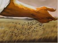 Cantos missa 11º Domingo Comum