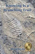 Knowing is a Branching Trail