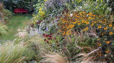 Y por fin la lluvia en el jardín de Rosanna Castrini