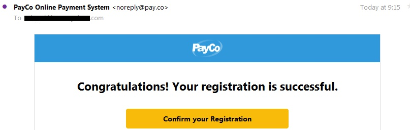 payco e-payment
