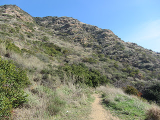 Looking east toward Burbank Peak