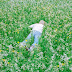 Porter Robinson - Nurture Music Album Reviews