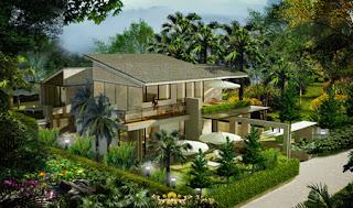 phong thủy cho thấy bạn nên trồng nhiều cây xanh cho ngôi nhà của bạn