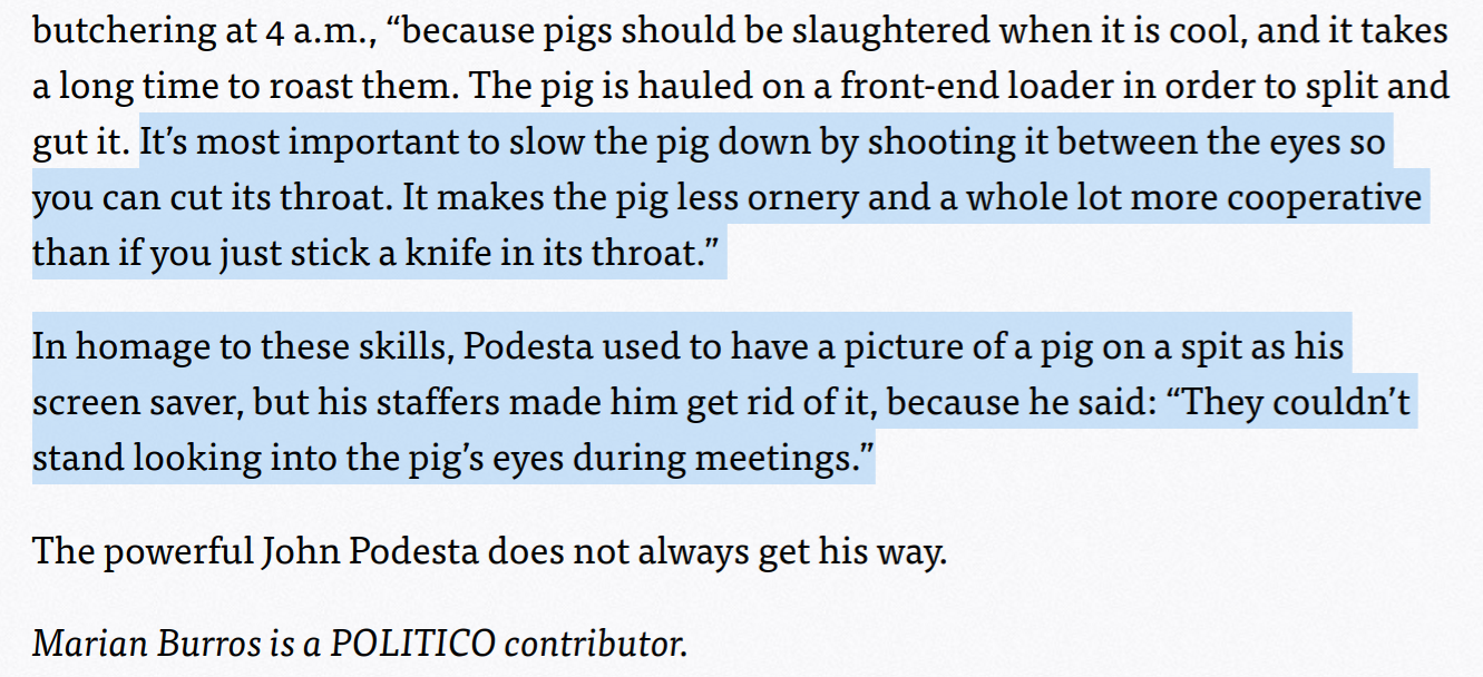 politico article john podesta pizzagate pig on spit screensaver