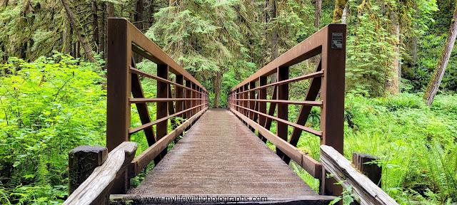 Nice bridge going to Marymere Falls