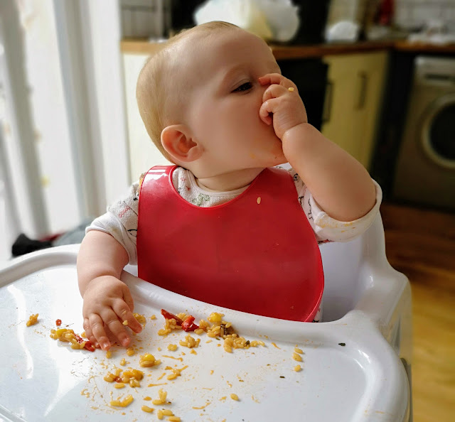 Image of weaning toddler eating sweetcorn and pepper whilst wearing tommee tippee comfi neck bob and sitting in a bebe style highchair available from Asda.