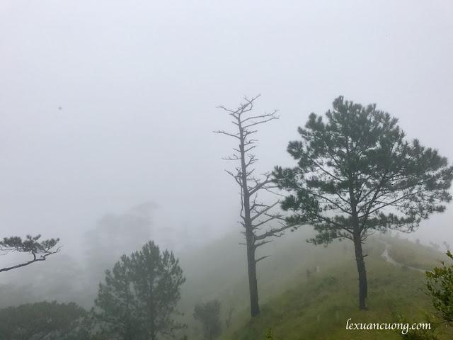 Trekking%2BTa%2BNang%2BPhan%2BDung%2B3 - Cung đường trekking Tà Năng - Phan Dũng ngày trở lại, mùa mưa 2016