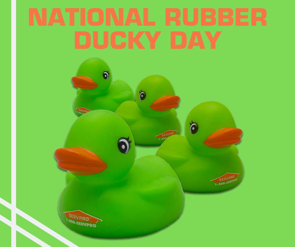 National Rubber Ducky Day Wishes Sweet Images