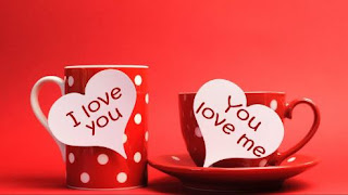 This image has an empty alt attribute; its file name is Happy-valentine-day-Images-In-Hindi-Shayari-Status-DP-Download9.jpg