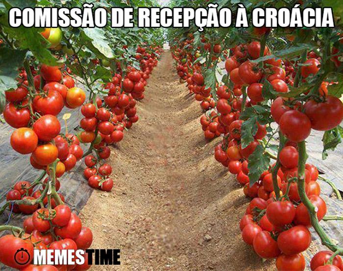 Meme Plantação de Tomates Gigantes – Comissão de recepção à croácia