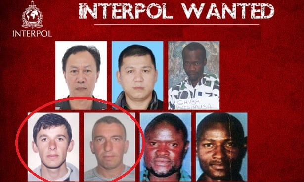 Albania tops the list of wanted by Interpol with 117 people