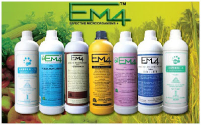 Manfaat EM-4 Terhadap Kesuburan Tanah dan Tanaman