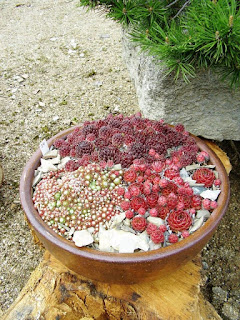 Unique Small Rock Garden Ideas