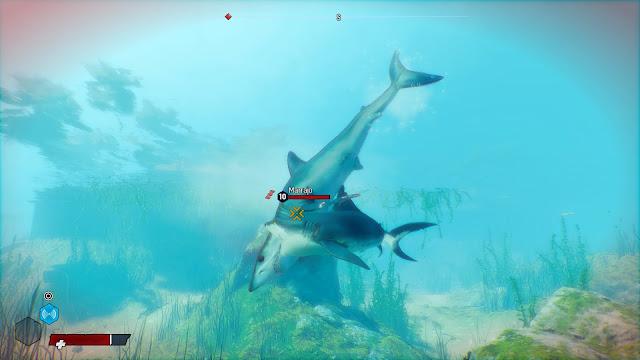 Maneater - pelea marina