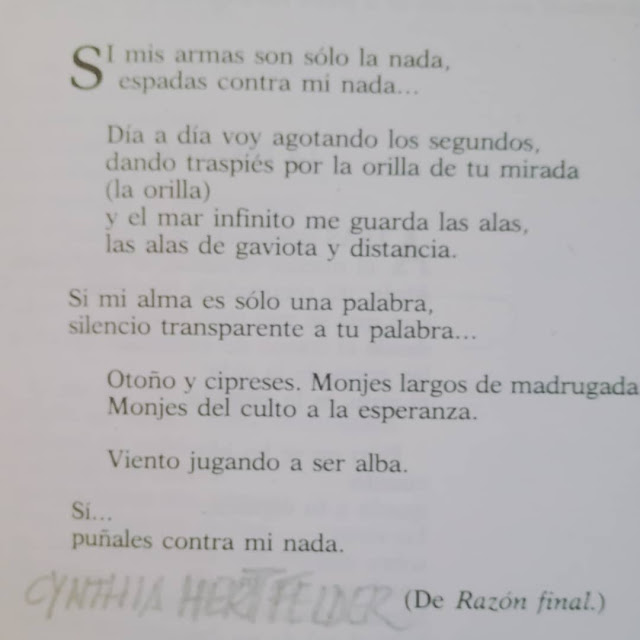 blog-de-poesia-miguel-angel-cervantes-arma