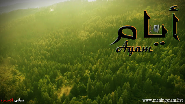 معنى اسم ايام وصفات حاملة هذا الاسم Ayam