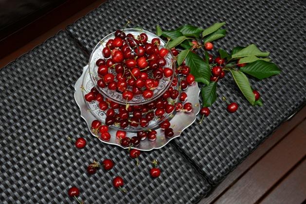 Cerezas y picotas del Jerte: propiedades saludables y usos culinarios que no sabías