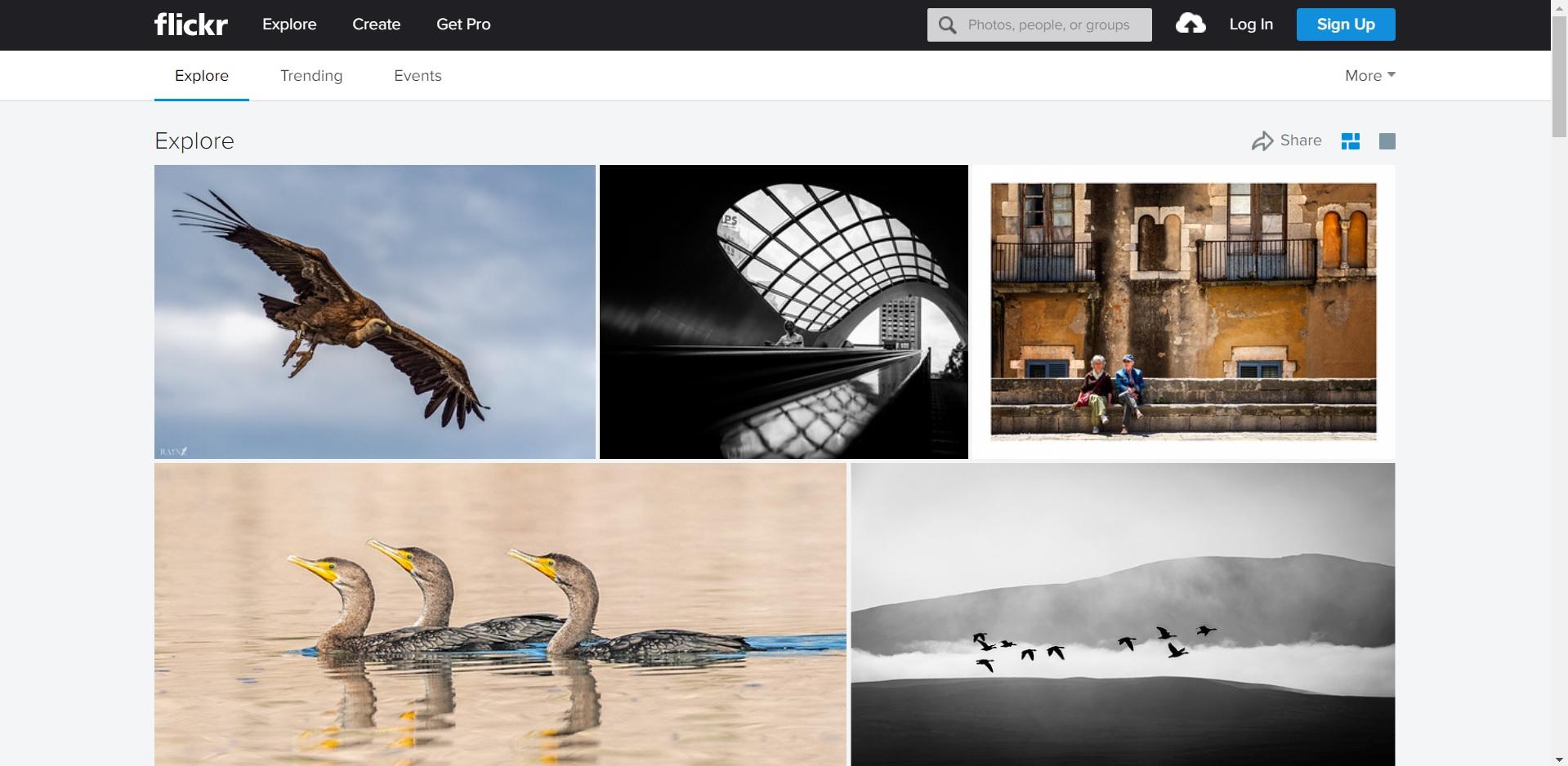 Flickr - Best website for royalty free images