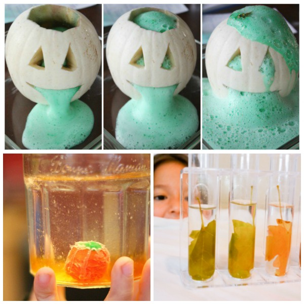 20 totally awesome Fall experiments for kids
