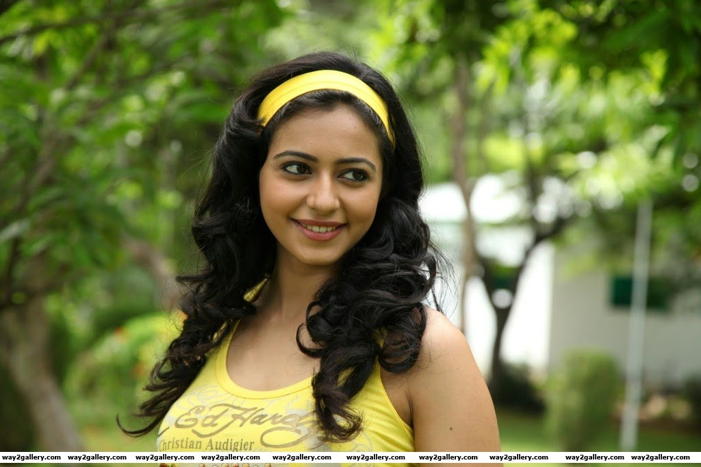 rakul preet singh photo gallery and rakul preet singh spicy gallery 17