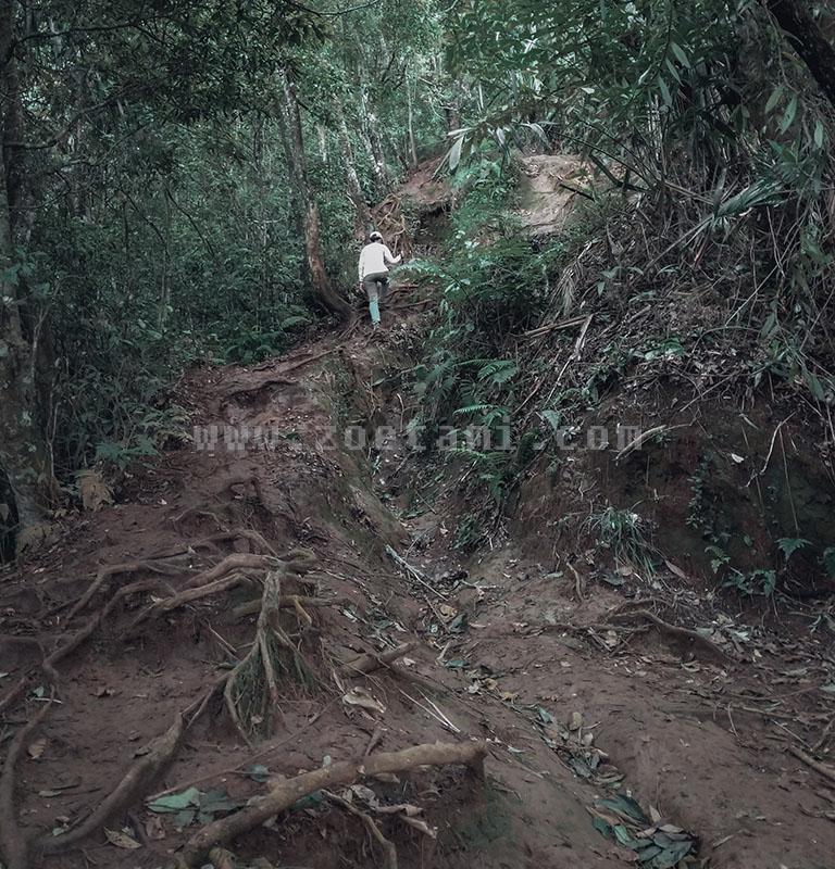 Jalur Pendakian Gunung Burangrang Kecil-kecil Cabe Rawit