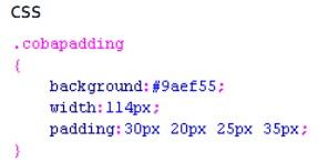 Pengertian dari CSS, Fungsi CSS Beserta Contoh nya 14_