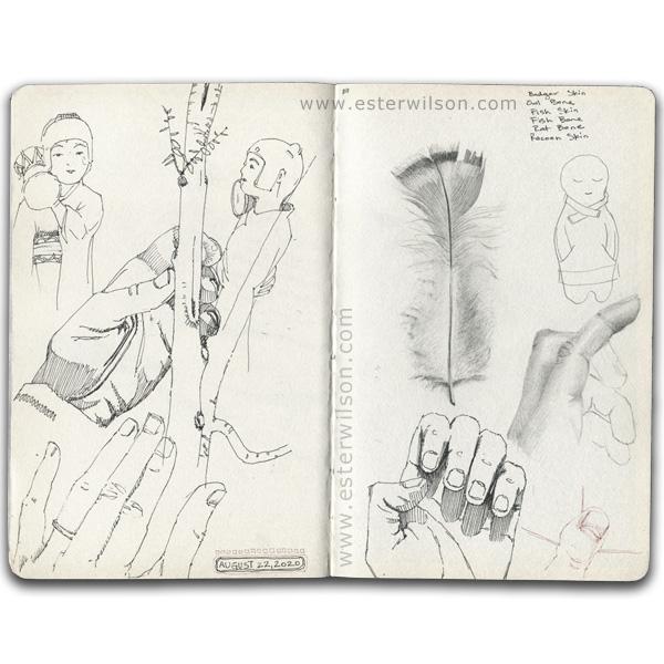 Observation drawing in the Sketchbook