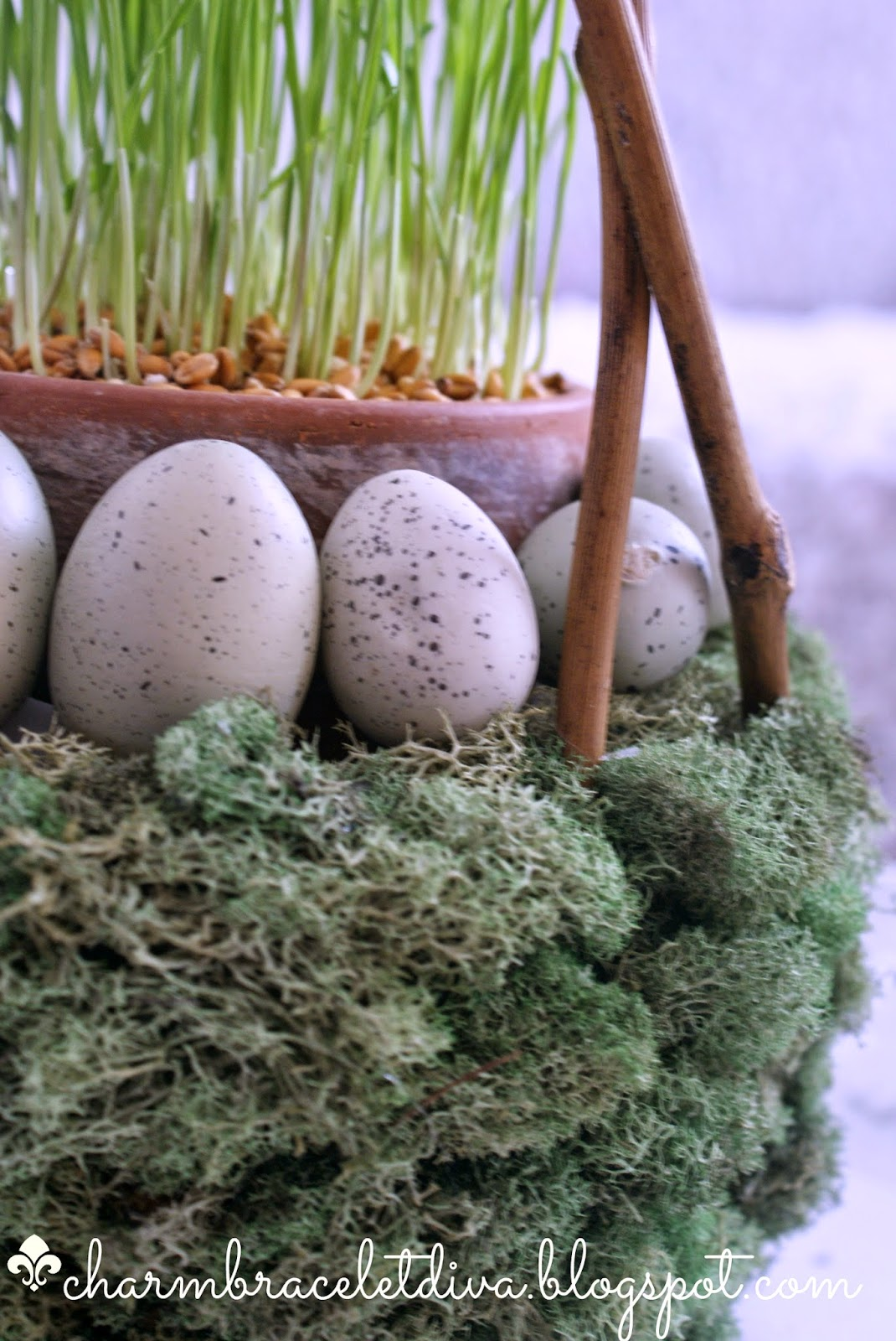 mossy Easter basket filled with wheat grass and robin's eggs