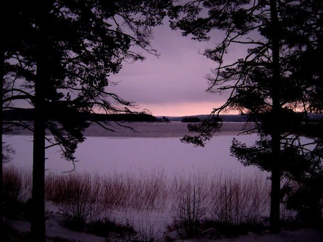 järvi, ranta