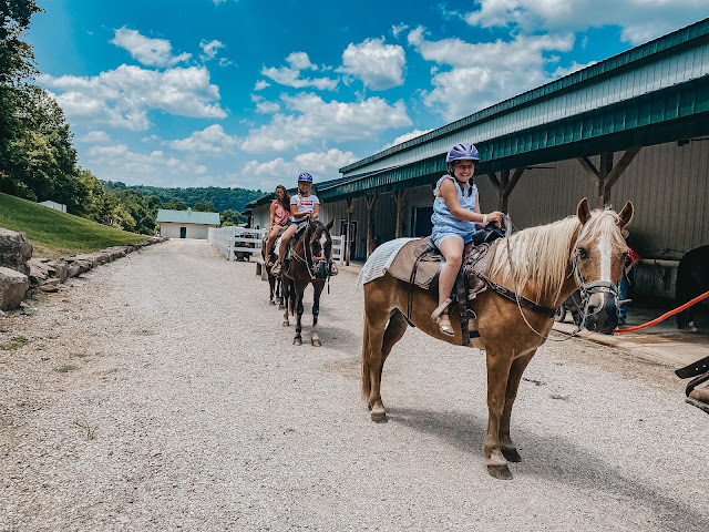 French Lick Resort Stables