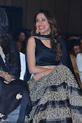 Pragya Jaiswal at ONV Audio Launch-thumbnail-5