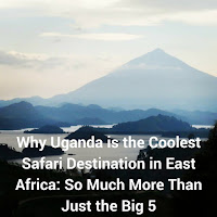 Why Uganda is the Coolest Safari Destination in East Africa: So Much More Than Just The Big 5