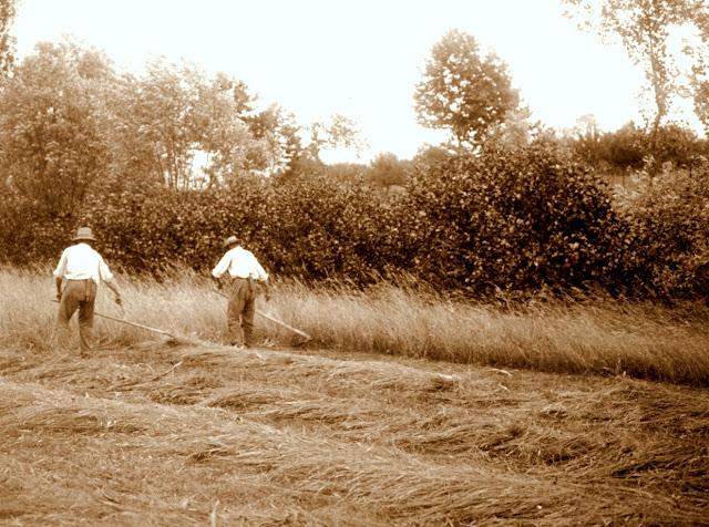 agriculteur et Rancher site de rencontre règles de datation Duggar