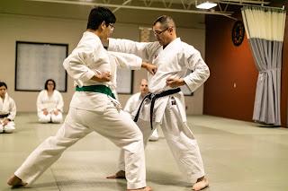 karate school ann arbor, ann arbor karate school