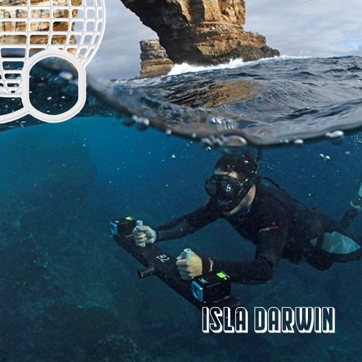 Darwin Island: