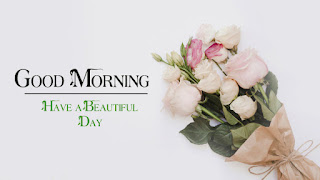 Good Morning Royal Images Download for Whatsapp Facebook13