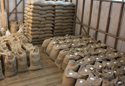 principales países exportadores de café