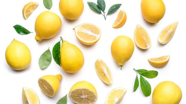 Symptoms of Lemon Ingestion in Dogs?