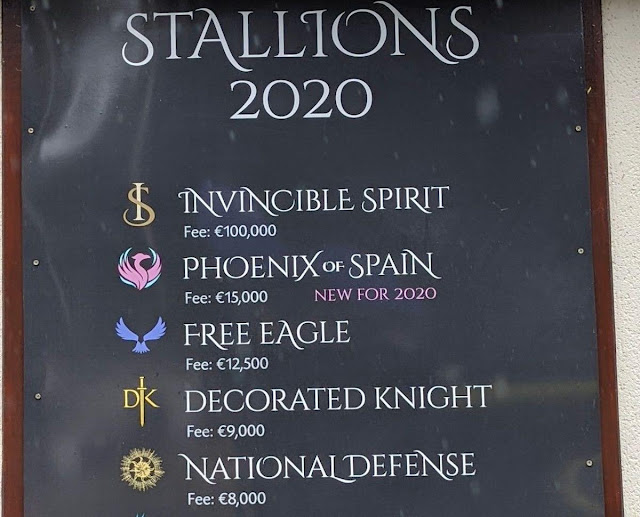 Stallion price list at the Irish National Stud and Gardens
