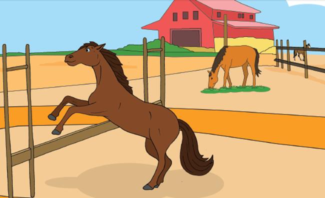 Hewan Kuda