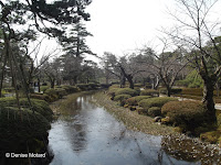 Hedge-lined small river - Kenroku-en Garden, Kanazawa, Japan