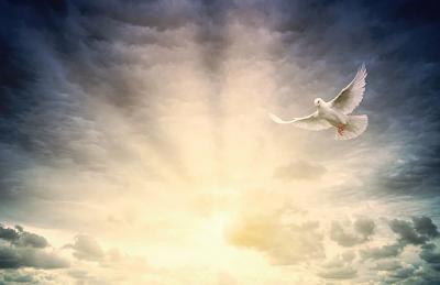 Download RPP 1 Lembar Agama Katolik Kelas VIII | Mengikuti Bimbingan Roh Kudus