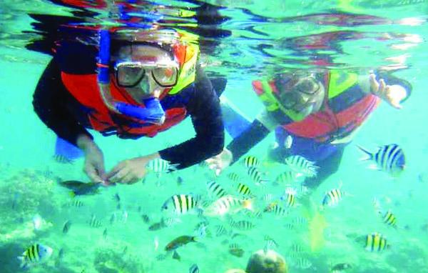 Wisata Snorkling di Bali