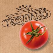 Trevijano