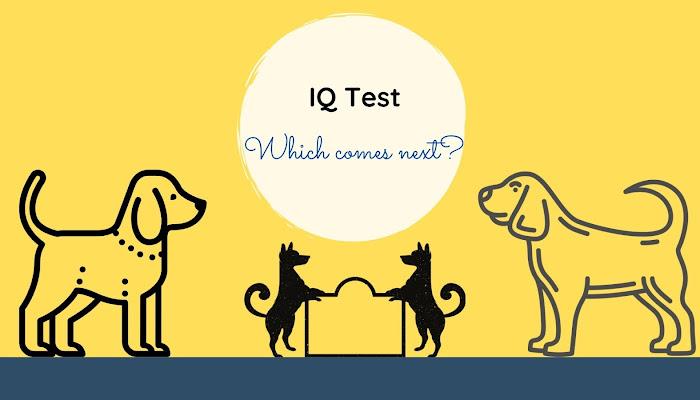 IQ Test: Which comes next?