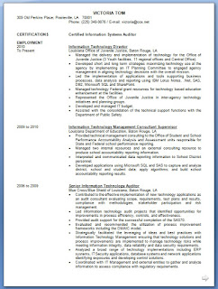 information technology director resume format in word free