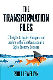 The Transformation Files: 17 Insights to Inspire Managers and Leaders in the Transformation of a Digital Economy Business by Rob Llewellyn - book promotion services
