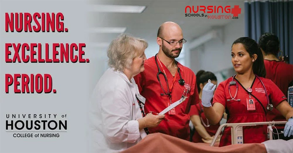 University of Houston Nursing