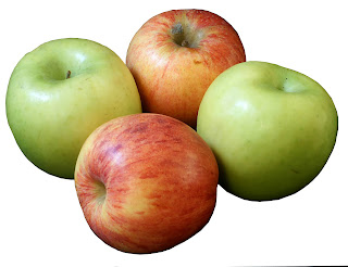 Apples are great for horses and riders!