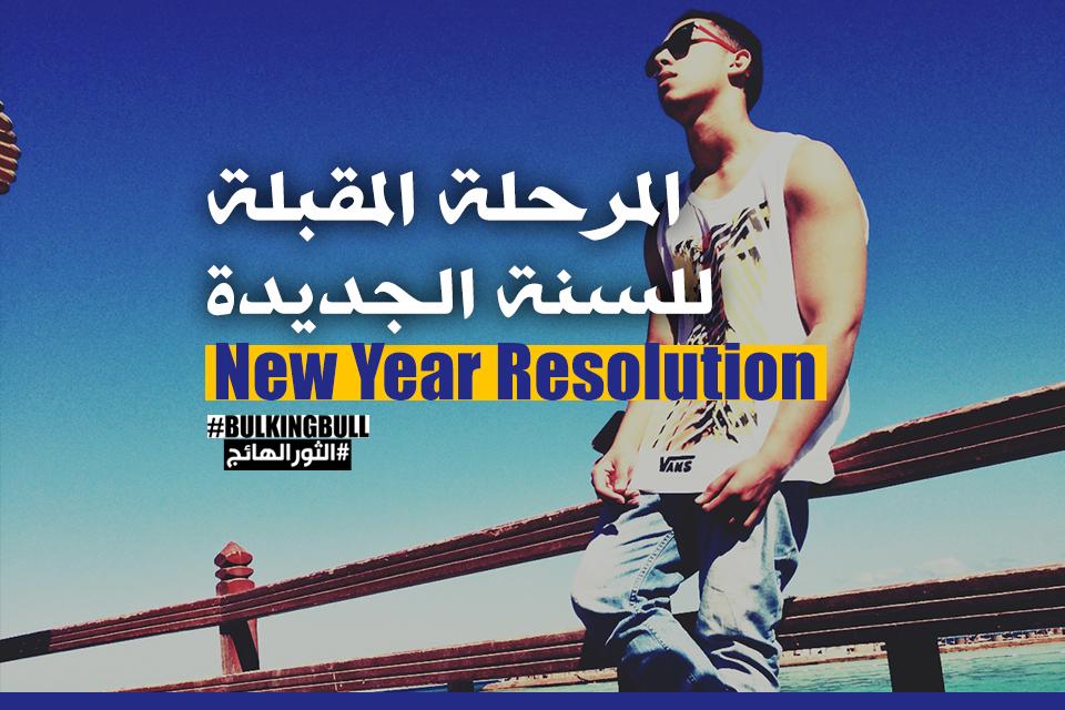 المرحلة المقبلة للسنة الجديدة (New Year Resolution)